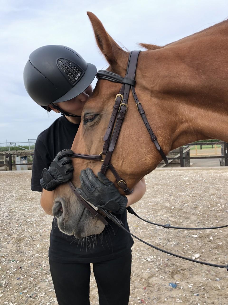 So, why horses?